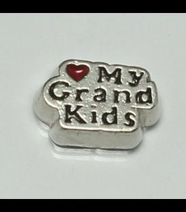 Charm love my grandkids