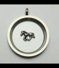 Charm Paard