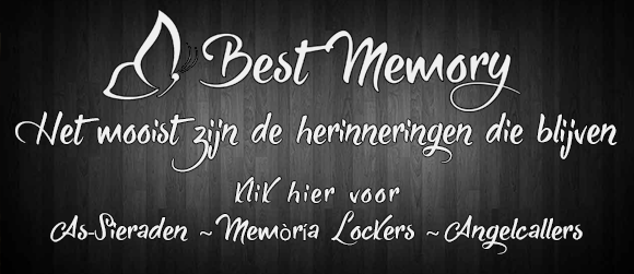 bestmemory.nl